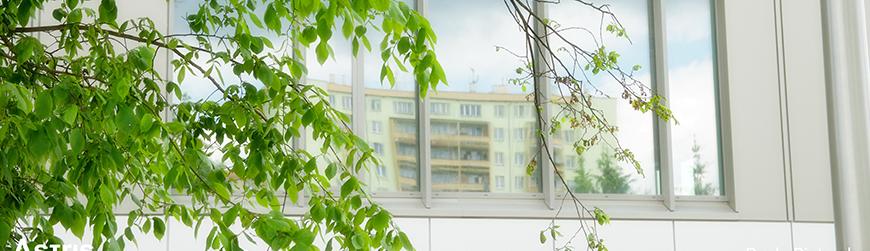 Biuro do wynajęcia Kraków
